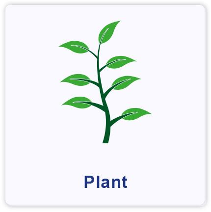 plant | sending samples